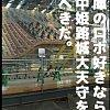 しろあるき・1 修理中姫路城