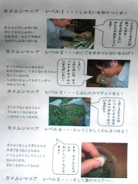 kamemushi.jpg