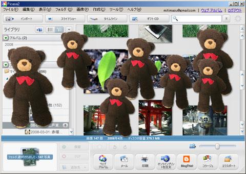 picasa-bear.jpg