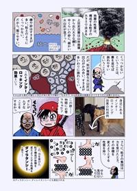 sanada_haran_sample_01_03.jpg